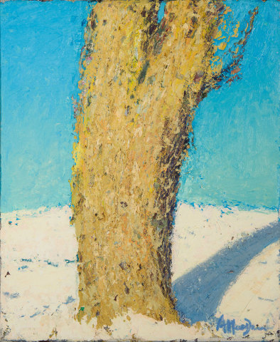 Allan MacDonald, oak shadow, 2019