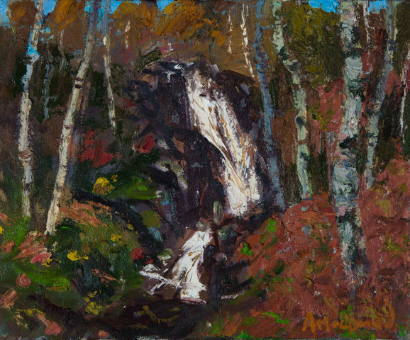 Allan MacDonald, Waterfall, Cannich, 2019