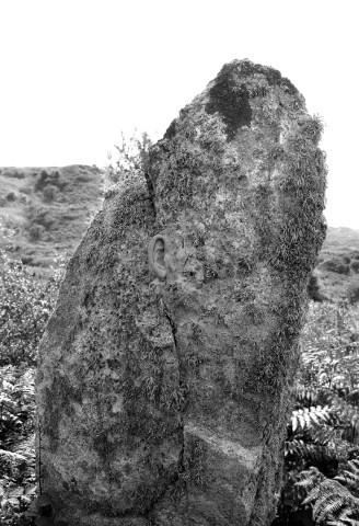 Jonny Briggs, The Uncarved Block (ear grafted onto neolithic menhir), 2017