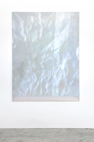 Martine Poppe, Analogical Change #26 (White Whale), 2014