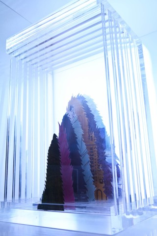 Hu Renyi 胡任乂, Flying Stone, 2013