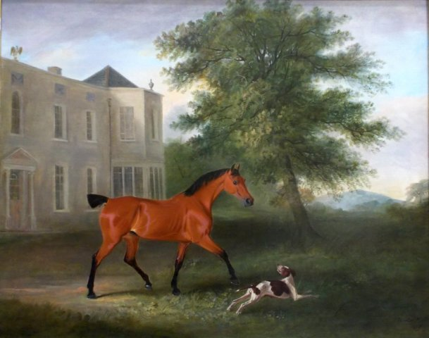 Hugh Dick's Mare and Pointer outside Violet Hill House