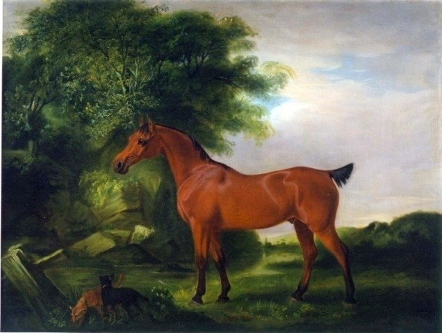 "An Egyptian Pony, ""Whisperer"" with two Irish Terriers and a goat in a landscape by a stream in an Irish landscape. !"