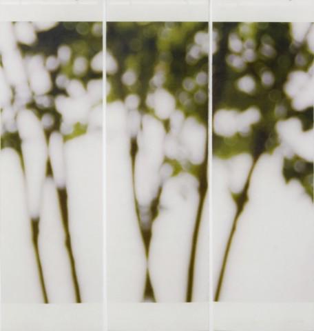 Jeri Eisenberg, Towards the Overlook, 2008