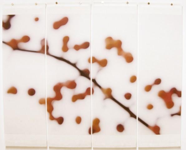 Jeri Eisenberg, Crabapple (Fall), 2008