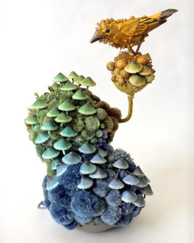 Amy Gross, Mycena Biotope