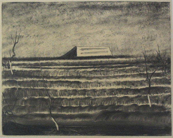 ZHANG Lei 张雷, A Cement House in the Fields 田里的水泥房, 2013