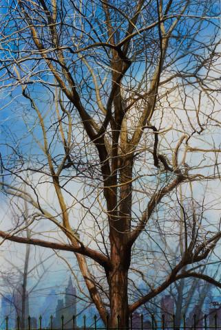 Andres Castellanos, Trellis Tree