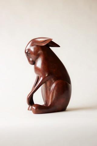 Peter Killeen, Varanasi Hare