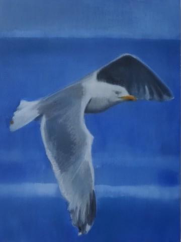 Seagulls in Flight I