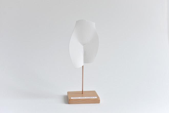 Petites Luxures, Paper Venus 1, 2018