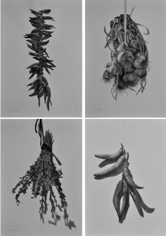 Hanging Series
