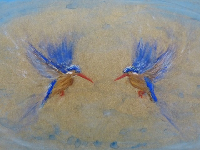 Sarah Elder  Kingfishers