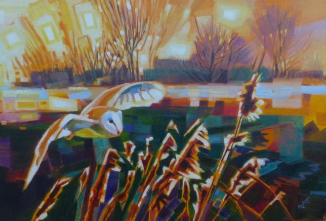 Brin Edwards, Barn Owl, Evening