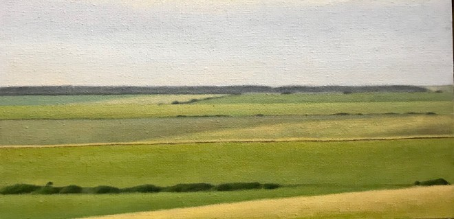 David Stubbs, Sussex Downs From Beachy Head