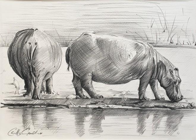 Camilla Gardener, Hippos, 2018