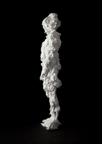 Marcus Coates, Iron Prominent, Notodonta dromedarius (Moth) Self Portrait, shaving foam, 2013