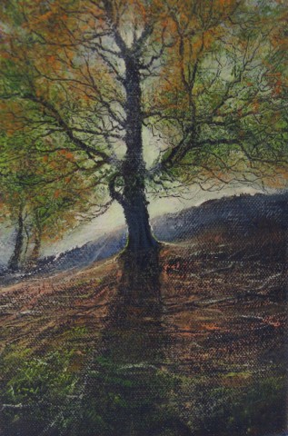 Gerald Dewsbury, Beech Light