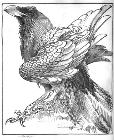 Colin See-Paynton, Raven