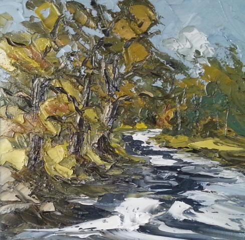 Martin Llewellyn, Afon Llugwy, near Betws y Coed
