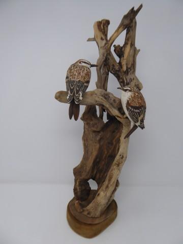 John & Marilyn Davies, Tree Creepers