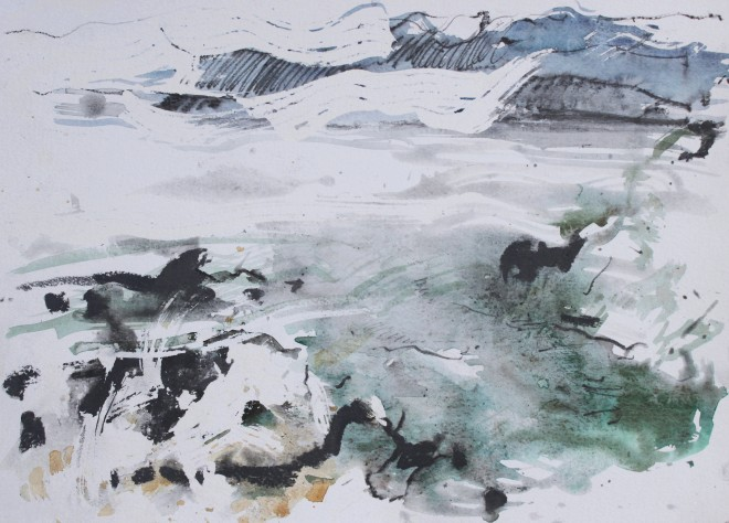 Chloe Holt, Study of Anglesey Rock Pools