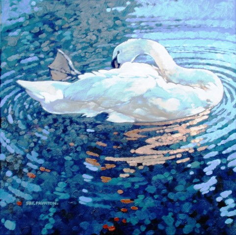 Colin See-Paynton, Sunlit Swan I