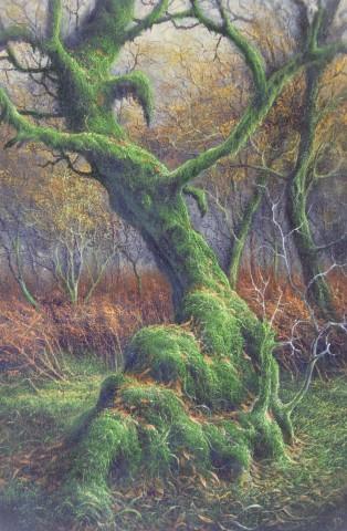 Gerald Dewsbury, Old Birch, Boch y Rhaedr