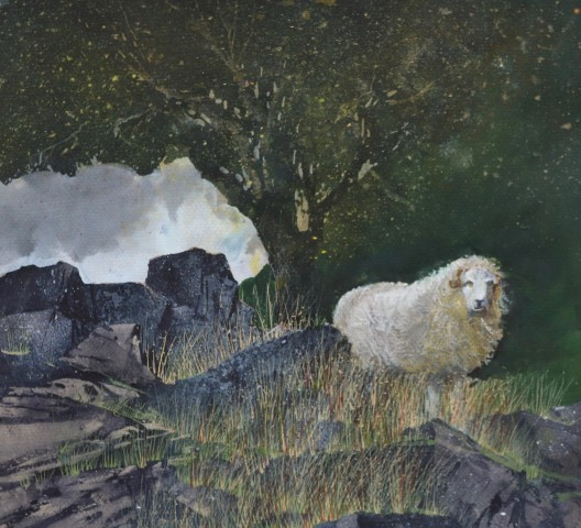 Malcolm Edwards, Sheltering Ram