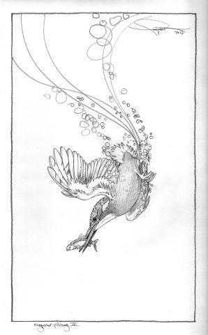 Colin See-Paynton, Kingfisher Fishing IV