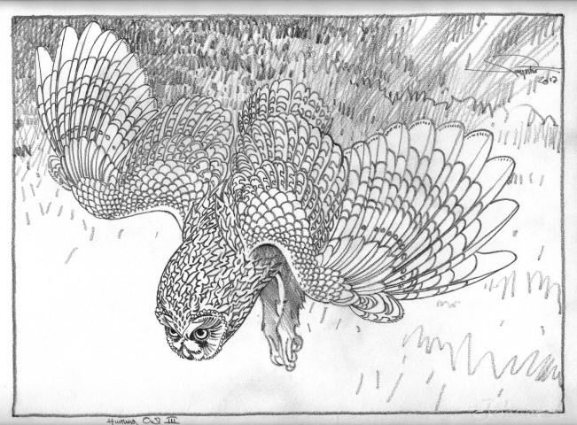 Colin See-Paynton, Hunting Owl III