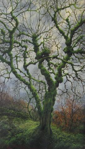 Gerald Dewsbury, Burred Birch II