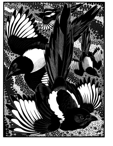 Colin See-Paynton, Of a Feather - Tiding of Magpies
