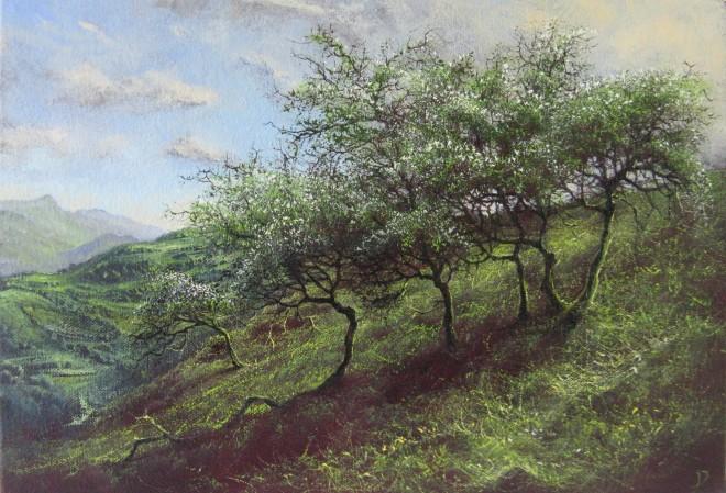 Gerald Dewsbury, Hawthorn above Benglog