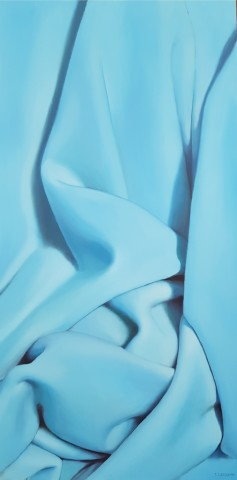 James Guy Eccleston, Blue Blanket, cropped