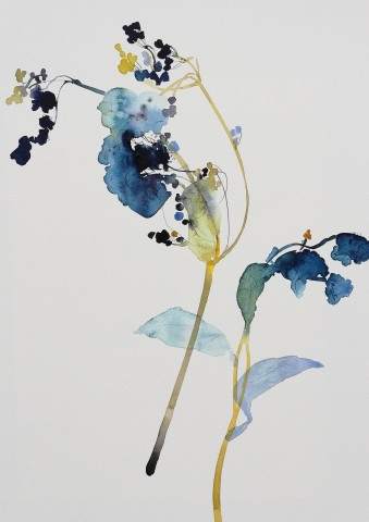 Susan Kane, Summer