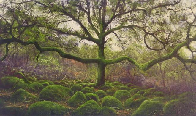 Gerald Dewsbury, Arms of Oak