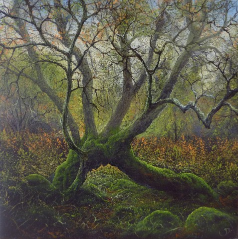 Gerald Dewsbury, Birch Arch
