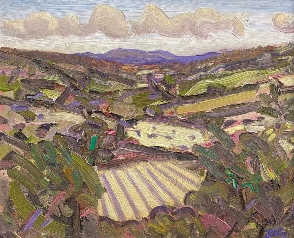 David Lloyd Griffith, July Fields, Dyffyn Dulas I