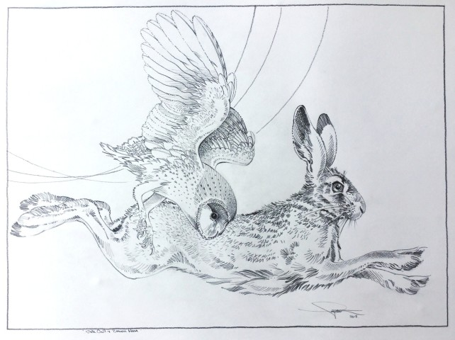 Colin See-Paynton, Nocturnal Encounters - White Owl & Brown Hare