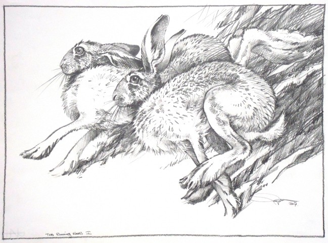 Colin See-Paynton, Two Running Hares I