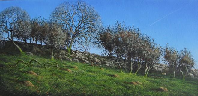 Gerald Dewsbury, Old Wall, Arenig