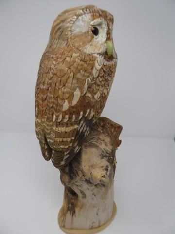 John & Marilyn Davies, Tawny Owl