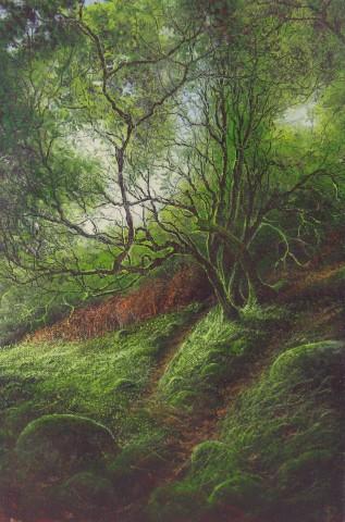 Gerald Dewsbury, Wood Light