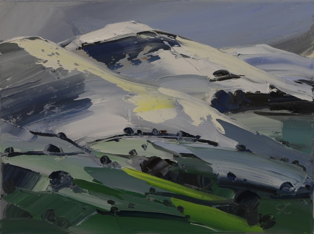 Sarah Carvell, Late Snow on the Clwydians