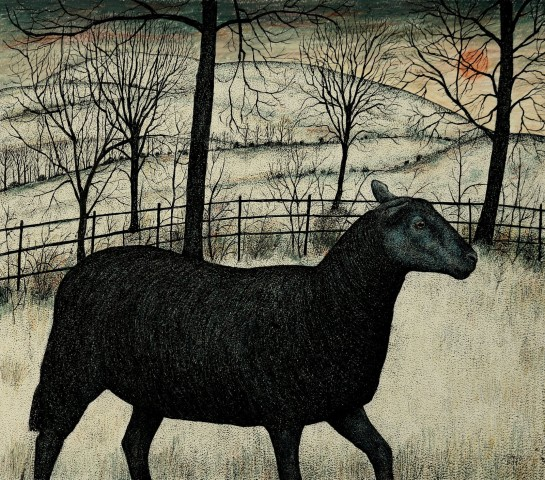 Seren Bell, Black Sheep, Midwinter