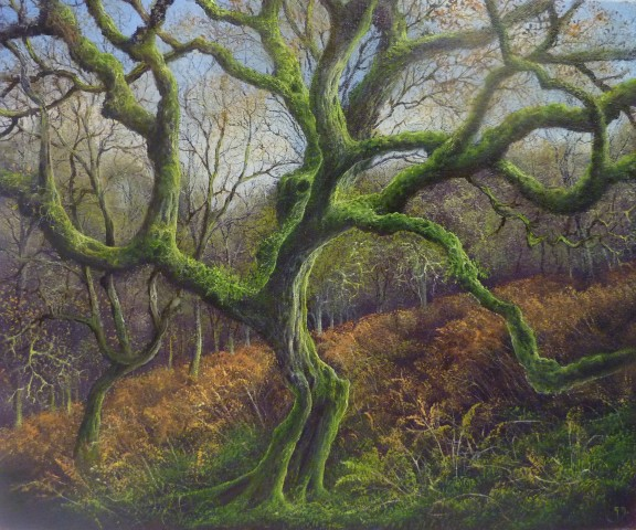 Gerald Dewsbury, Twisting Birch