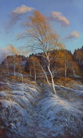 Gerald Dewsbury, Bogwood Birch in the Snow