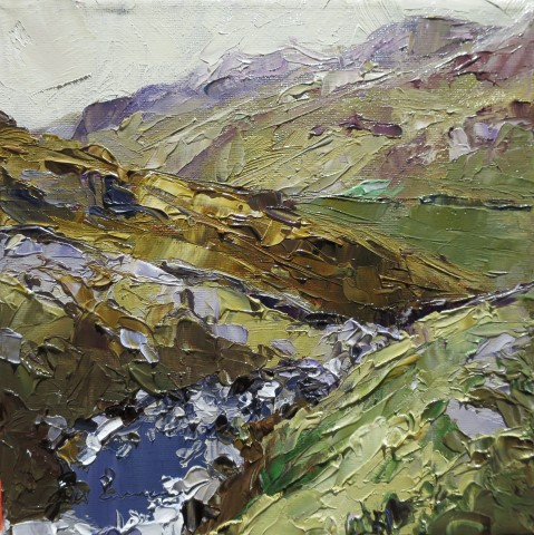 David Grosvenor, Cwm Lloer