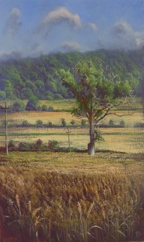 Gerald Dewsbury, Oak in the Corn II